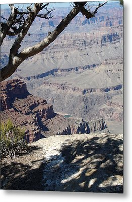 Metal Print featuring the photograph Grand Canyon by David S Reynolds