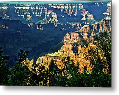 Metal Print featuring the photograph Grand Canyon  Golden Hour On Angel Point by Bob and Nadine Johnston