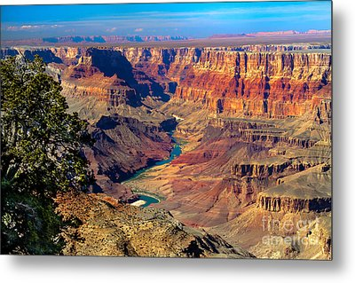 Grand Canyon Sunset Metal Print by Robert Bales