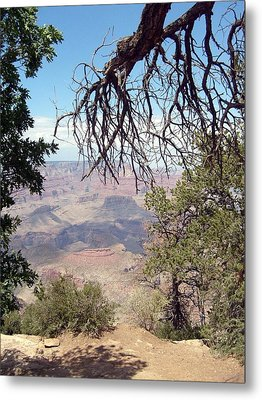 Grand Canyon View 1 Metal Print