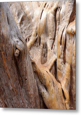 Grand Canyon Wood Metal Print