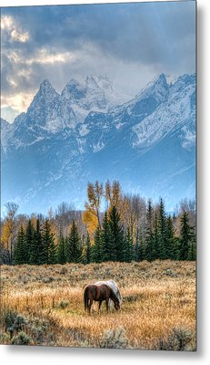 Grand Landscape  Metal Print by Kelly Marquardt
