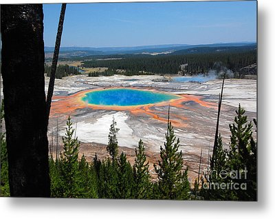 Grand Prismatic Spring From Hillside Metal Print
