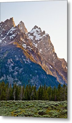 Grand Teton From Jenny Lake Metal Print by Adam Pender