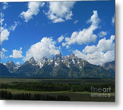 Metal Print featuring the photograph Grand Teton National Park by Janice Westerberg