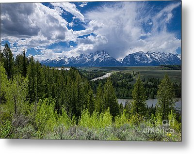Grand Teton Np Metal Print by Juergen Klust