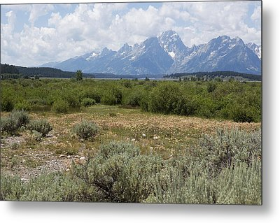 Metal Print featuring the photograph Grand Tetons From Willow Flats by Belinda Greb