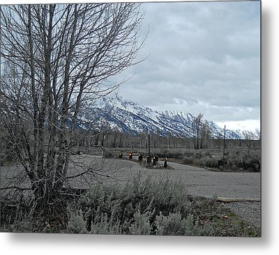 Grand Tetons Landscape Metal Print by Michele Myers