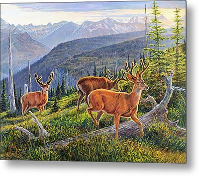 Granite Park Bucks Metal Print by Steve Spencer