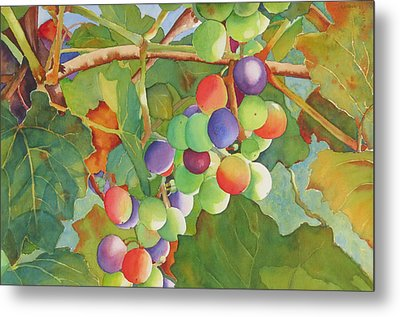Grape Fusion Metal Print by Judy Mercer