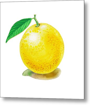 Metal Print featuring the painting Grapefruit by Irina Sztukowski