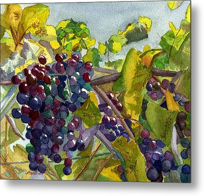 Metal Print featuring the painting Grapevines by Lynne Reichhart