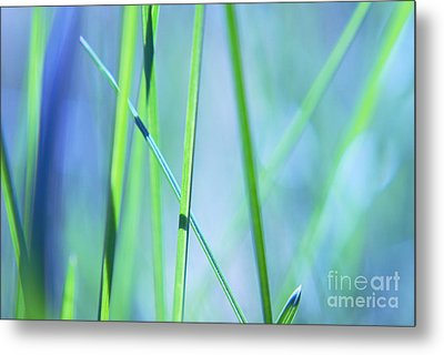 Grass Abstract - 0102a Metal Print by Variance Collections