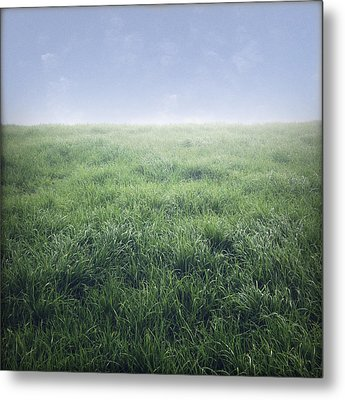Grass And Sky  Metal Print by Les Cunliffe
