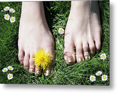 Grass Between My Toes Metal Print by Stephen Norris