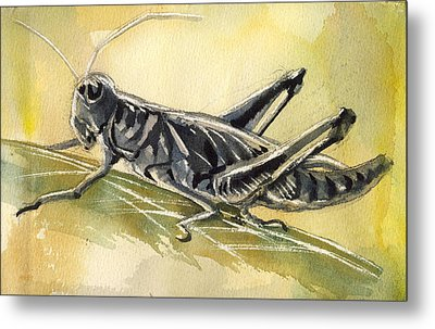 Grasshopper Metal Print by Alfred Ng