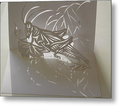 Grasshopper Pop Up Card Metal Print by Alfred Ng