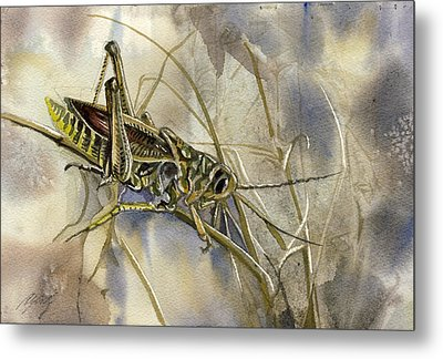Grasshopper Watercolor Metal Print by Alfred Ng