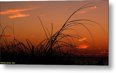 Grassy After Glow Metal Print