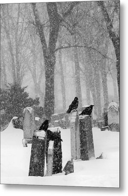 Graveyard Snow With Four Ravens  Metal Print by Gothicrow Images