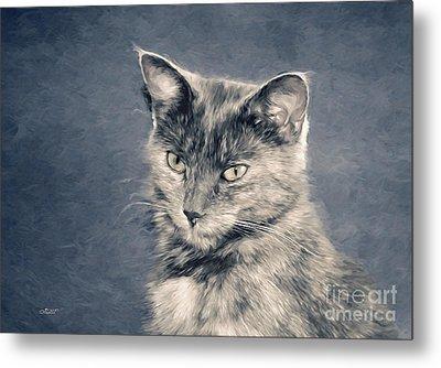 Gray Cat Metal Print by Jutta Maria Pusl