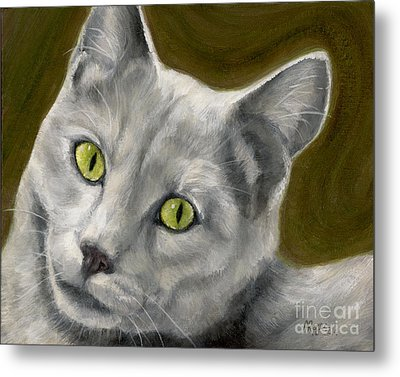 Gray Cat With Green Eyes Metal Print by Amy Reges