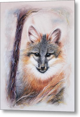 Gray Fox Metal Print by Patricia Lintner