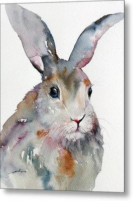 Gray Hare Metal Print
