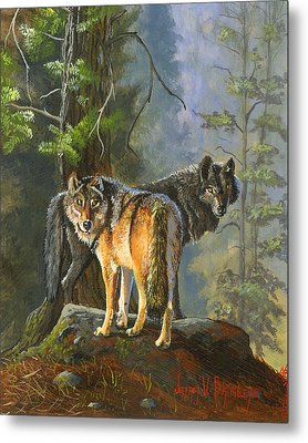 Gray Wolves Metal Print by Jeff Brimley