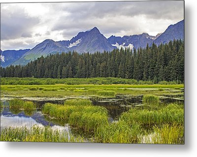 Great Alaskan Outdoors Metal Print by Saya Studios