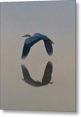 Great Blue Heron Metal Print by Jeff Wright