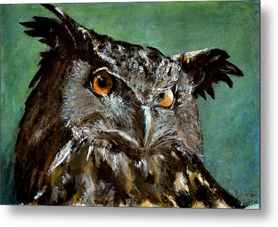 Great Horned Owl Metal Print by Carlo Ghirardelli