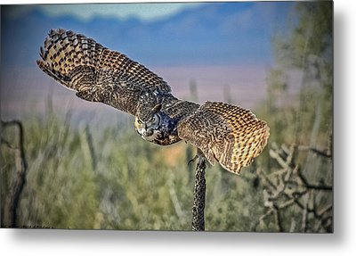 Metal Print featuring the mixed media Great Horned Owl by Elaine Malott