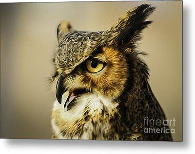 Great Horned Owl Metal Print by Julieanna D