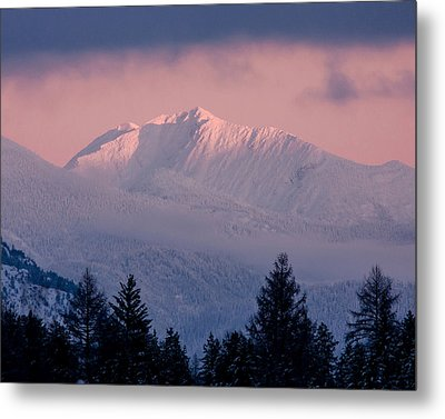 Metal Print featuring the photograph Great Northern by Jack Bell