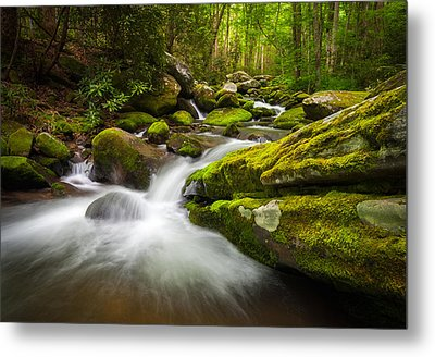 Great Smoky Mountains Gatlinburg Tn Roaring Fork - Gift Of Life Metal Print by Dave Allen