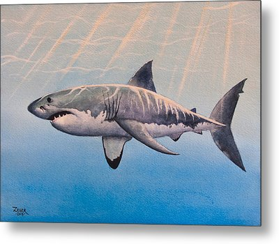 Great White Metal Print by James Zeger