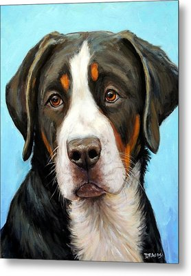 Greater Swiss Mountain Dog Pup Metal Print by Dottie Dracos