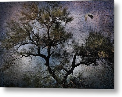 Metal Print featuring the photograph Greatness by Barbara Manis
