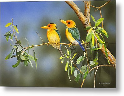 Green And Gold - Yellow-billed Kingfishers Metal Print