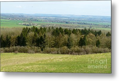 Green And Pleasant Land Metal Print by Julie Koretz