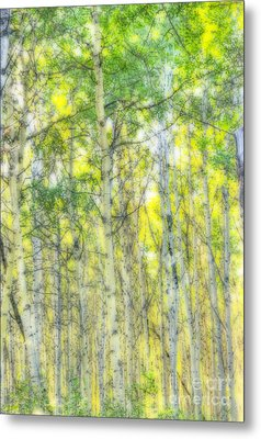 Green And Yellow Metal Print