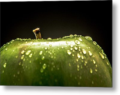 Green Apple Metal Print by Wade Brooks