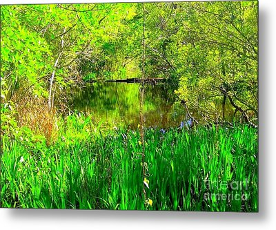 Metal Print featuring the photograph Green As Emerald's by Michael Hoard