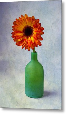 Green Bottle With Orange Daisy Metal Print by Garry Gay