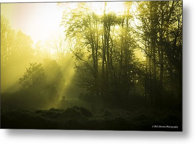 Metal Print featuring the photograph Green Dawn by Phil Abrams