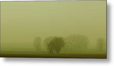 Metal Print featuring the photograph Green Day by Franziskus Pfleghart