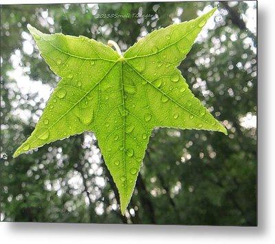 Green Droplets Metal Print by Sonali Gangane