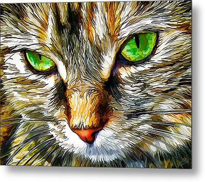 Green-eyed Monster Metal Print by ABeautifulSky Photography