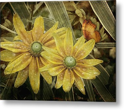 Metal Print featuring the photograph Green Eyed Susie by Barbara Orenya